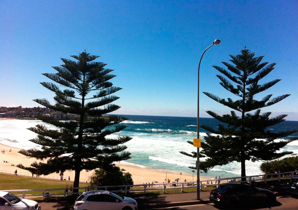 Foto: Bettina Brink. Bondi Beach ved Sydney