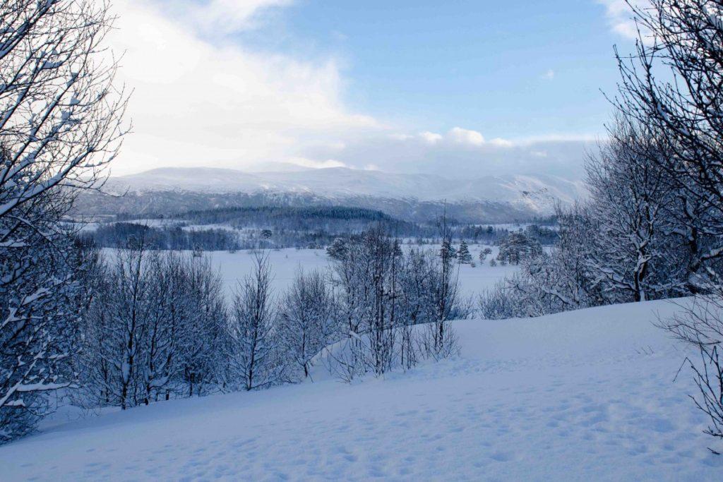 Udsigt ud over sneen i Tromsø, Norge