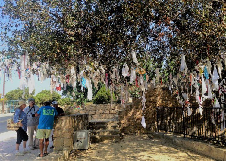 Træ, hvor folk hænegr deres tøj og papirsstrimler på pafos