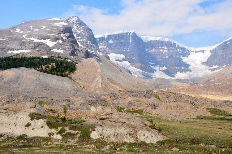 Bjerge i Columbia Icefields