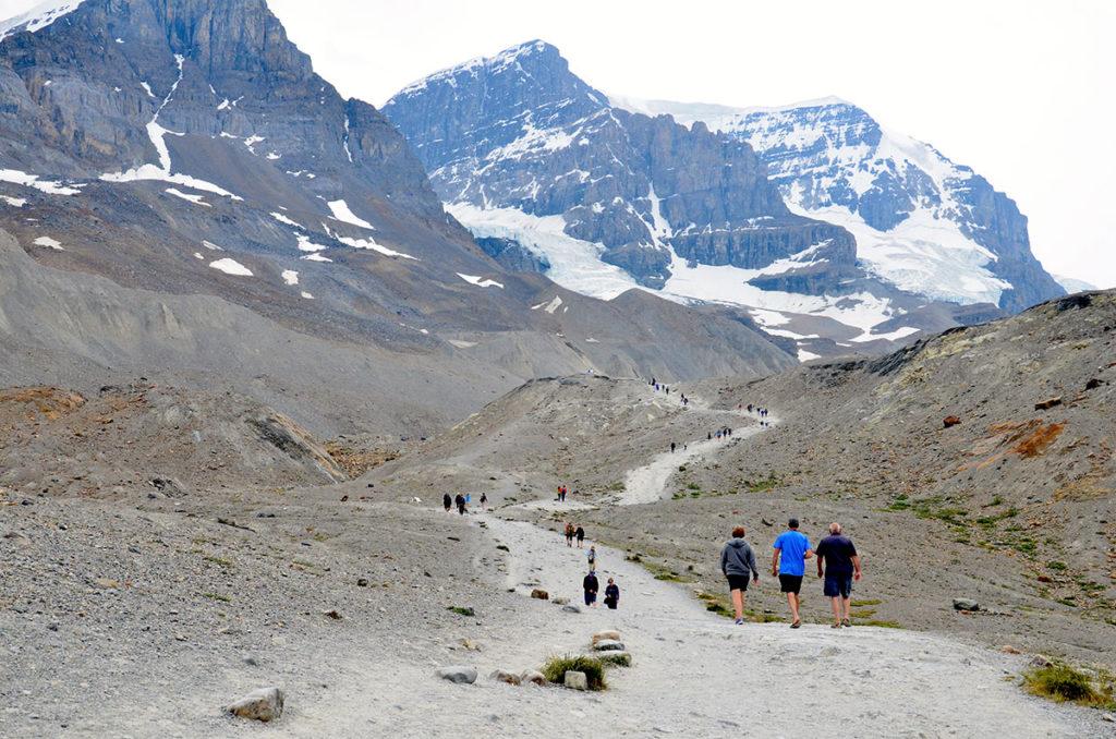 Athabasca-gletsjeren i Columbia Icefields