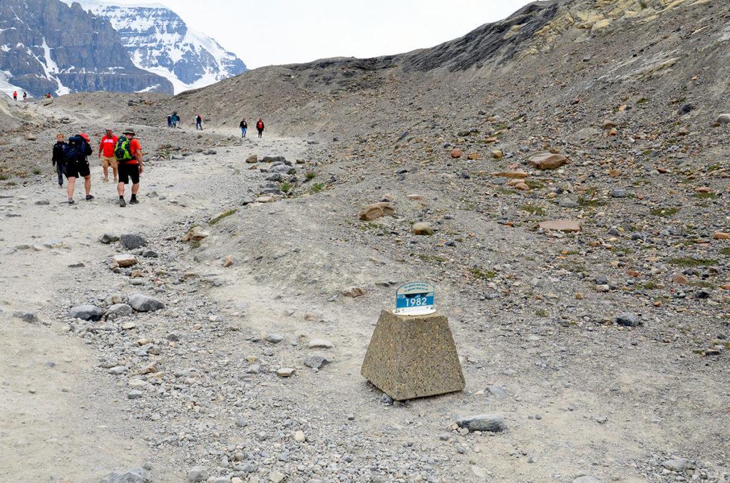 Gletsjer i Columbia Icefields i Canada