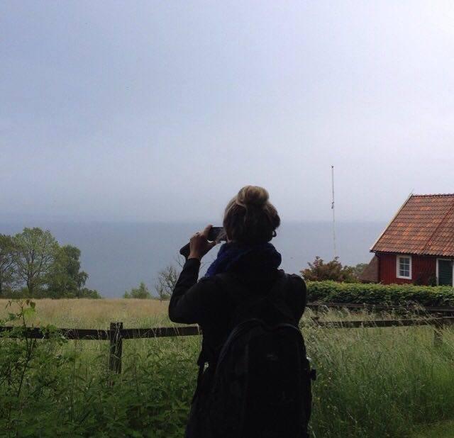Foto fra madvandring tæt på Malmø